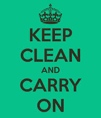 Keep-Clean-and-Carry-On-Saucha